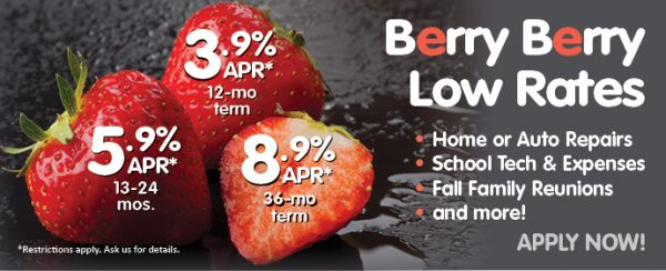 loan web graphic showing strawberries; headline: berry berry low rates