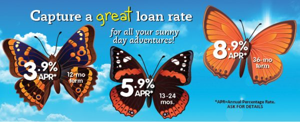 loan web graphic showing butterflies against a sky background; headline: capture a great loan rate