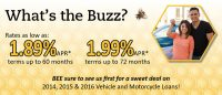 auto loan web graphic showing young couple with their new car on honeycomb background; headline: what's the buzz?
